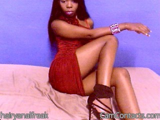 Start VIDEO CHAT with hairyanalfreak
