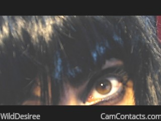 WildDesiree's profile