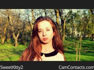 SweetKitty2