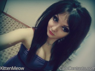 KittenMeow