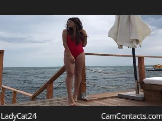 LadyCat24