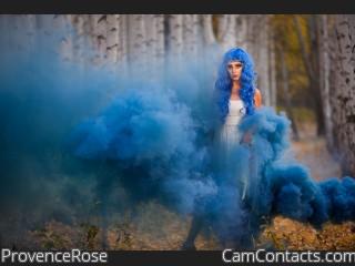 ProvenceRose
