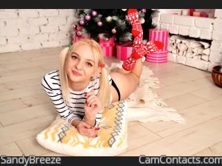 SandyBreeze