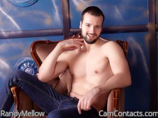 RandyMellow