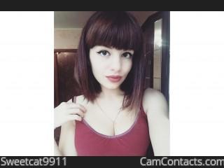 Sweetcat9911