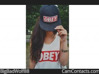 BigBadWolf88