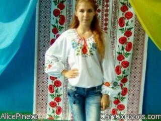 AlicePineca