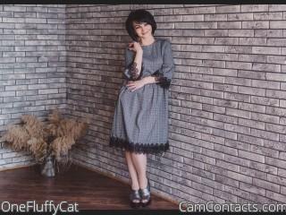 OneFluffyCat's profile