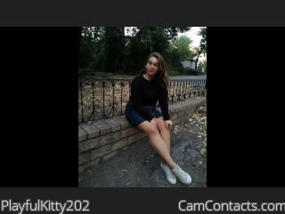 PlayfulKitty202