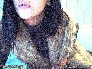 Start VIDEO CHAT with mouseangel