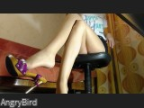 LIVE SEXCAM VIDEO CHAT mit AngryBird