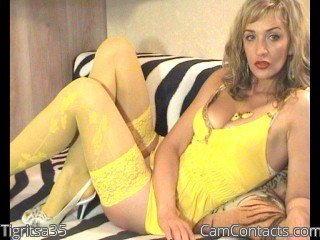Webcam model Tigritsa35 from CamContacts