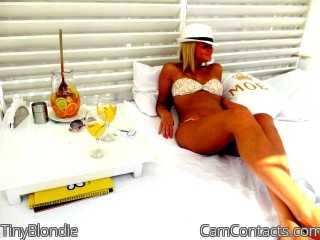 Webcam model TinyBlondie from CamContacts