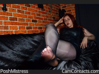 Webcam model PoshMistress from CamContacts