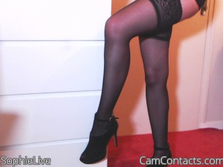 Webcam model SophieLive from CamContacts