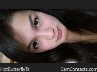 HotButterflyTs's profile