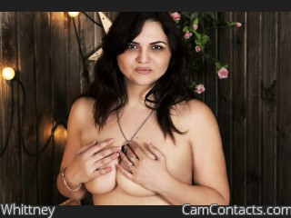 Webcam model Whittney from CamContacts