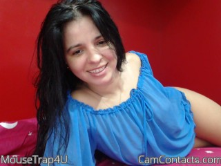 Webcam model MouseTrap4U from CamContacts
