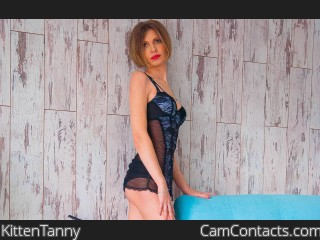 Webcam model KittenTanny from CamContacts