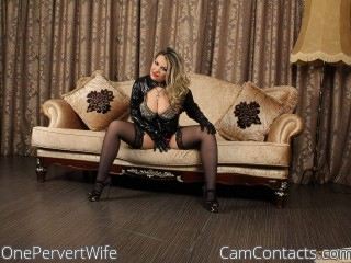 Webcam model OnePervertWife from CamContacts