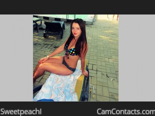 chat cam camcontacts