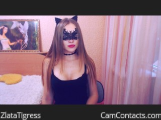Webcam model ZlataTigress from CamContacts