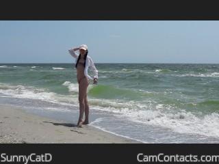 SunnyCatD