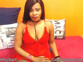 Start VIDEO CHAT with KittyStarX