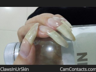 Webcam model ClawsInUrSkin from CamContacts