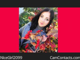 Webcam model NiceGirl2099 from CamContacts