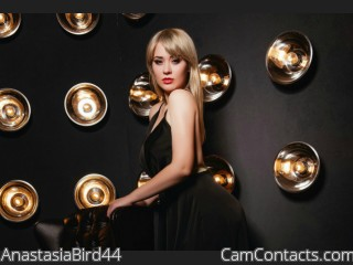 Webcam model AnastasiaBird44 from CamContacts