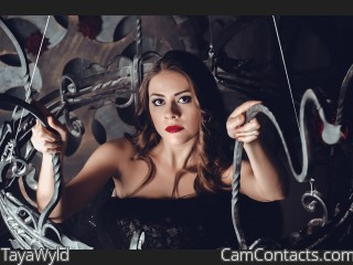 Webcam model TayaWyld from CamContacts