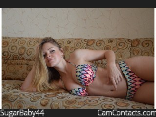 Webcam model SugarBaby44 from CamContacts