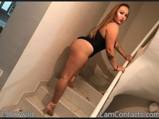 Webcam model 1SEXYwild from CamContacts
