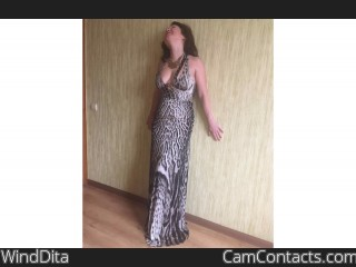 Webcam model WindDita from CamContacts