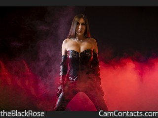 Webcam model theBlackRose from CamContacts