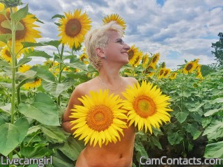 Webcam model Livecamgirl from CamContacts
