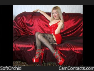 Webcam model SoftOrchid from CamContacts