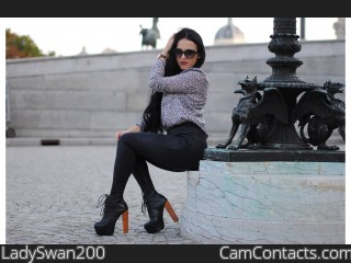 Webcam model LadySwan200 from CamContacts