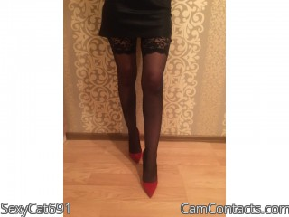 Webcam model SexyCat691 from CamContacts