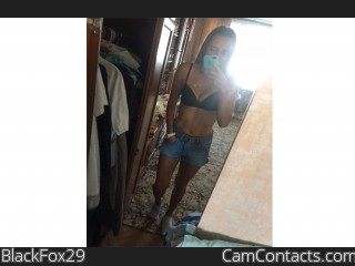 Webcam model BlackFox29 from CamContacts