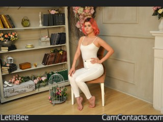 Webcam model LetItBee from CamContacts