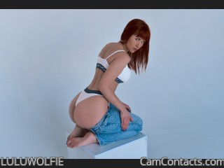 Webcam model LULUWOLFIE from CamContacts