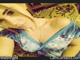 Webcam model WilldAngell from CamContacts