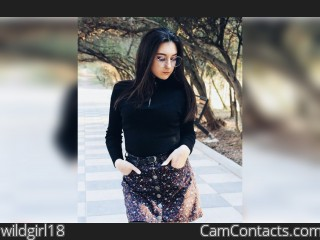 Webcam model wildgirl18 from CamContacts