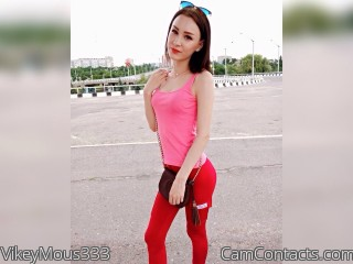 Webcam model VikeyMous333 from CamContacts