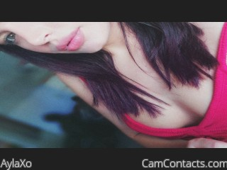 Webcam model AylaXo from CamContacts