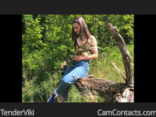 Webcam model TenderViki from CamContacts