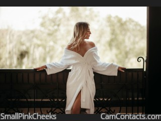 Webcam model SmallPinkCheeks from CamContacts