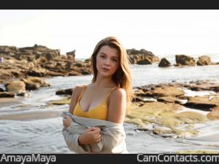 Webcam model AmayaMaya from CamContacts